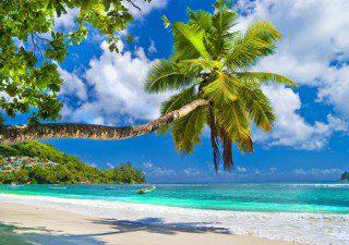 IFA Villas Bavaro Resort - Super Karibik Schnäppchen