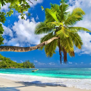 bigstock-idyllic-tropical-scenery--Sey-49637477