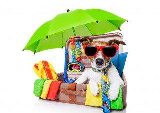 Urlaub Kundenwusch - Da helfen wir gerne weiter