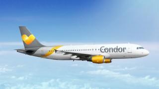 Mallorca Eintagsfliegen - Condor Aktion