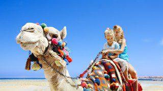 Neckermann Gutschein, Hilton Long Beach Resort,Residence Agyad Maroc